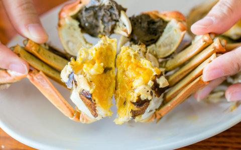【無毒大閘蟹 5~5.9兩蟹 3隻裝】正逢蟹膏濃郁 蟹肉豐滿時