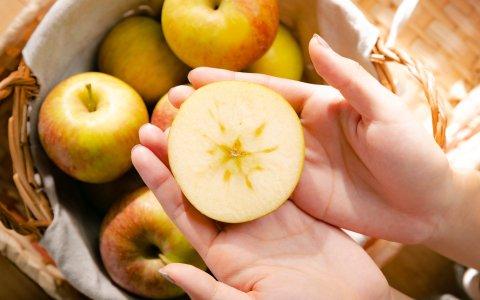 【甜蜜預購!梨山傳承三代的日本「惠」蜜蘋果5斤裝】香甜多汁 咖滋咖滋超爽脆